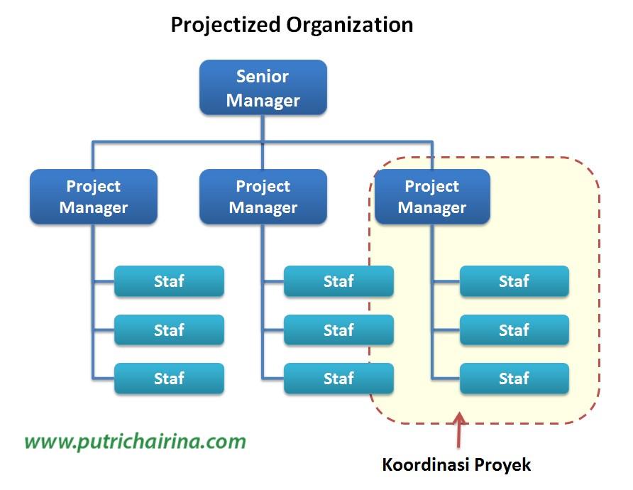 Struktur Organisasi Dalam Manajemen Proyek (Serial ...