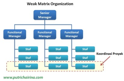 Weak Matrix Organization